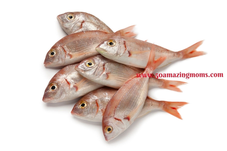 Fresh raw small red snappers